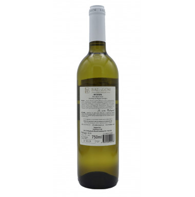 Badagoni, Mtsvane 2018, Georgia (Case of 6 bottles)